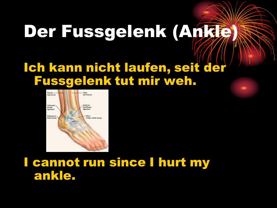 Der Fussgelenk (Ankle) Ich kann nicht laufen, seit der Fussgelenk tut mir weh. I cannot run since I hurt my ankle.