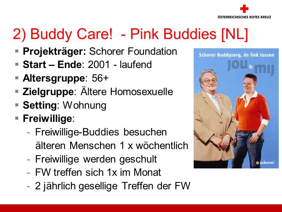 2) Buddy Care! - Pink Buddies [NL] Projekträger: Schorer Foundation Start – Ende: 2001 - laufend Altersgruppe: 56+ Zielgruppe: Ältere Homosexuelle Set