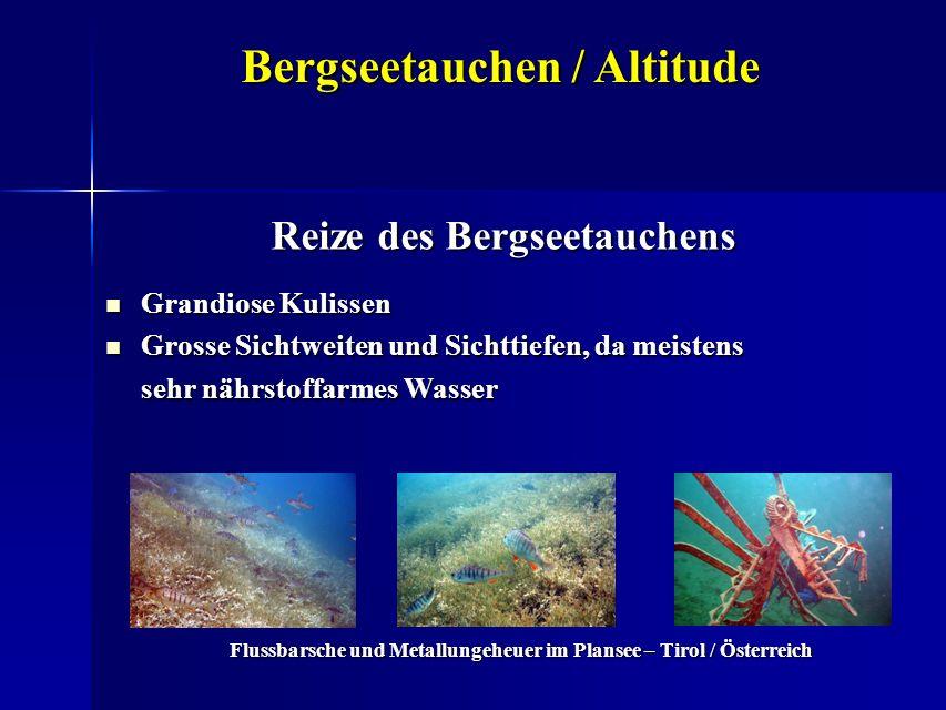 Bergseetauchen / Altitude Reize des Bergseetauchens Grandiose Kulissen Grandiose Kulissen Grosse Sichtweiten und Sichttiefen, da meistens Grosse Sicht