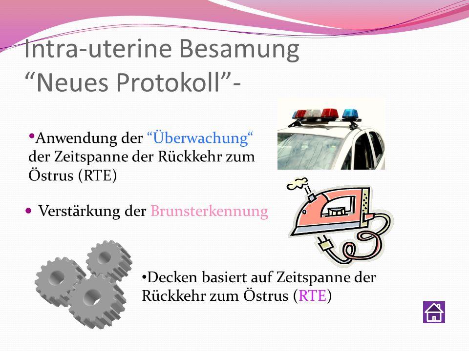Intra-uterine Besamung Neues Protokoll- Verstärkung der Brunsterkennung Decken basiert auf Zeitspanne der Rückkehr zum Östrus (RTE) Anwendung der Über