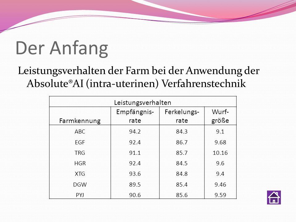 Der Anfang Leistungsverhalten der Farm bei der Anwendung der Absolute®AI (intra-uterinen) Verfahrenstechnik Leistungsverhalten Farmkennung Empfängnis-