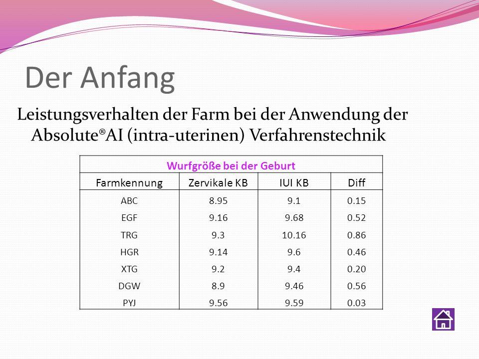 Der Anfang Leistungsverhalten der Farm bei der Anwendung der Absolute®AI (intra-uterinen) Verfahrenstechnik Wurfgröße bei der Geburt Farmkennung Zervi