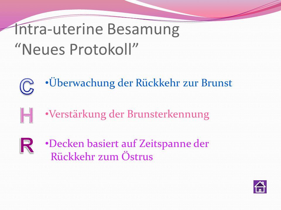 Intra-uterine Besamung Neues Protokoll Überwachung der Rückkehr zur Brunst Verstärkung der Brunsterkennung Decken basiert auf Zeitspanne der Rückkehr