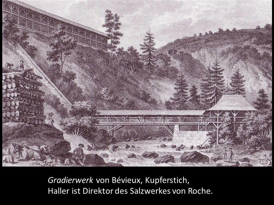 aus einer Monographie der mitteleuropäischen Orchideen, Kupferstich von J. Störcklin.