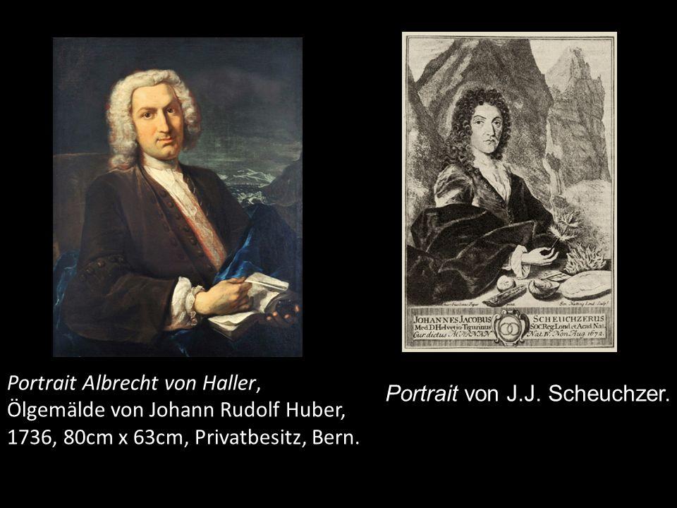 Portrait Albrecht von Haller, Ausschnitt, Ölgemälde von Johann Rudolf Huber, 1736, 80cm x 63cm, Privatbesitz, Bern.