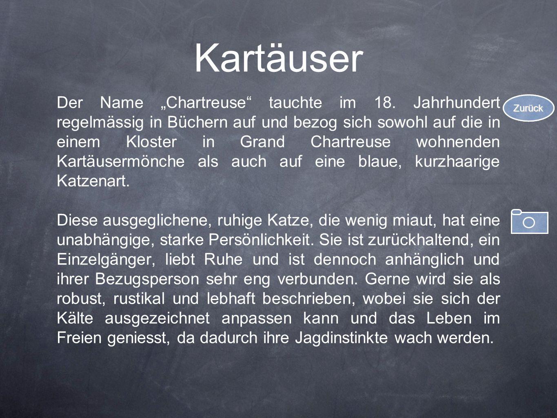 Kartäuser Der Name Chartreuse tauchte im 18. Jahrhundert regelmässig in Büchern auf und bezog sich sowohl auf die in einem Kloster in Grand Chartreuse
