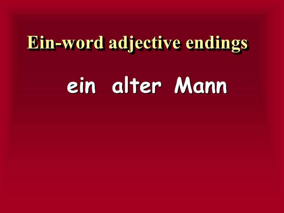 RESERESENESENESEMRMNMRMNSRSRSRSR erererer eseseses eseseses ee enenenenen en enen en enen Der-word adjective endingsEin-word adjective endings -E-E-E-