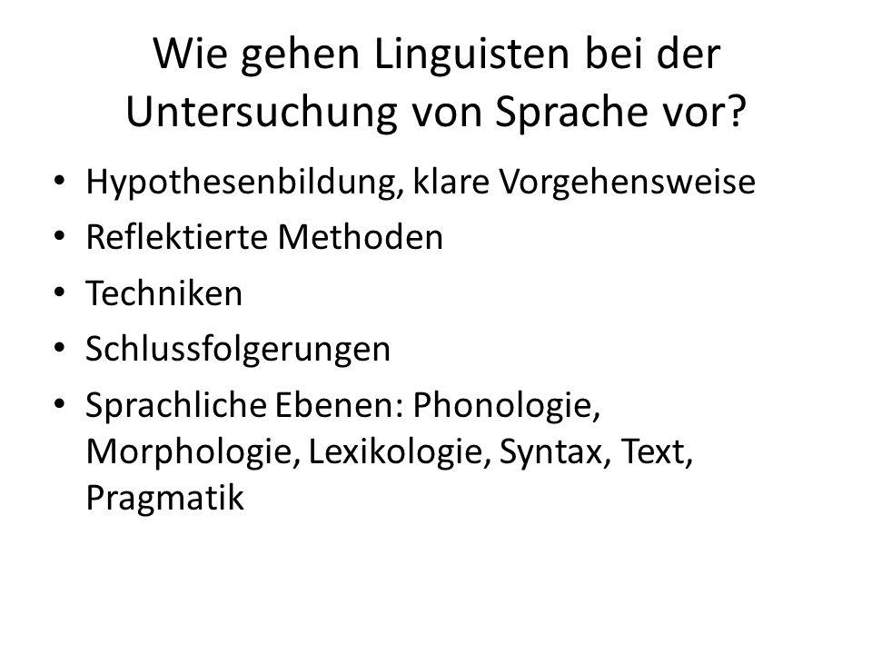 Wie gehen Linguisten bei der Untersuchung von Sprache vor? Hypothesenbildung, klare Vorgehensweise Reflektierte Methoden Techniken Schlussfolgerungen