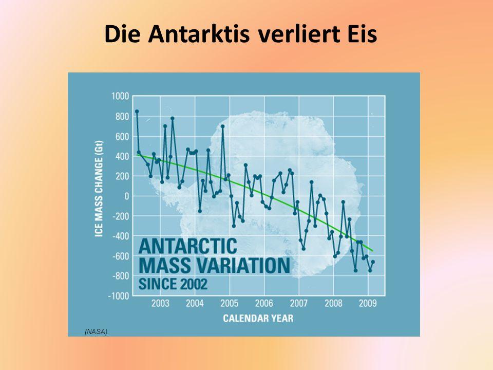Meeresspiegel steigen an Wärmeres Wasser und Schmelzwasser von Gletschern und Eiskappen lassen den Meeresspiegel ansteigen.