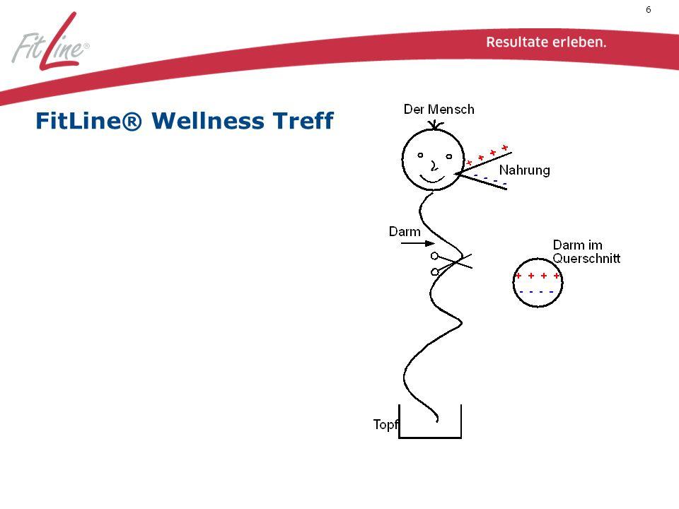 Hier sehen wir, wie die Guten (+) und die Schlechten (-) nach Zerkleinerung und Transport über die Speiseröhre und den Magen im Darm angekommen sind.