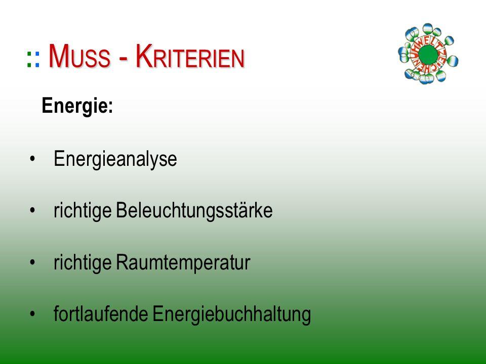 Energieanalyse richtige Beleuchtungsstärke richtige Raumtemperatur fortlaufende Energiebuchhaltung :: M MM MUSS - KRITERIEN Energie:
