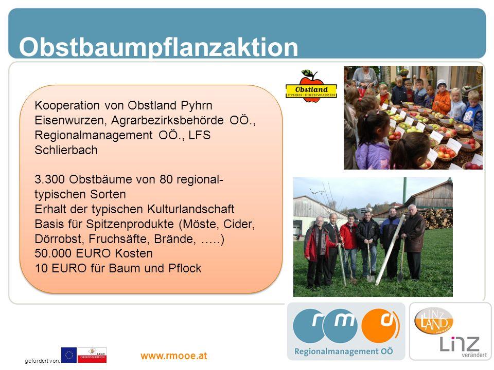 Obstbaumpflanzaktion Kooperation von Obstland Pyhrn Eisenwurzen, Agrarbezirksbehörde OÖ., Regionalmanagement OÖ., LFS Schlierbach 3.300 Obstbäume von
