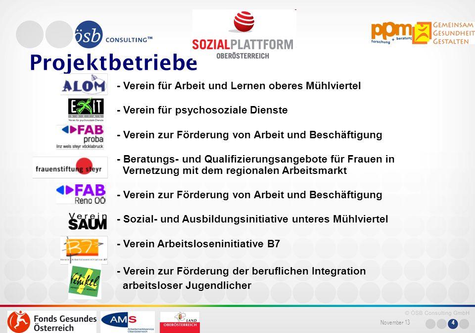 November 13 4 Projektbetriebe - Verein für Arbeit und Lernen oberes Mühlviertel - Verein für psychosoziale Dienste - Verein zur Förderung von Arbeit u