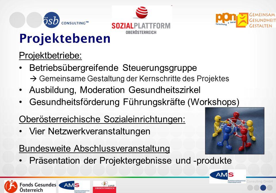 November 13 17 Partizipation(6) Ressourcenorientierte Gesundheitszirkel Partizipation/Umsetzung