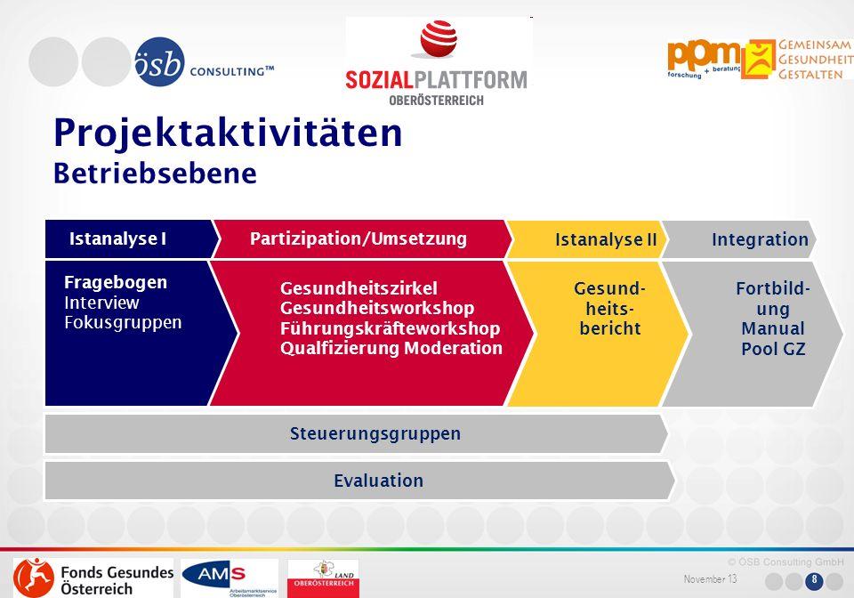 November 13 8 Partizipation/Umsetzung Istanalyse I Istanalyse IIIntegration Projektaktivitäten Betriebsebene Gesundheitszirkel Gesundheitsworkshop Füh