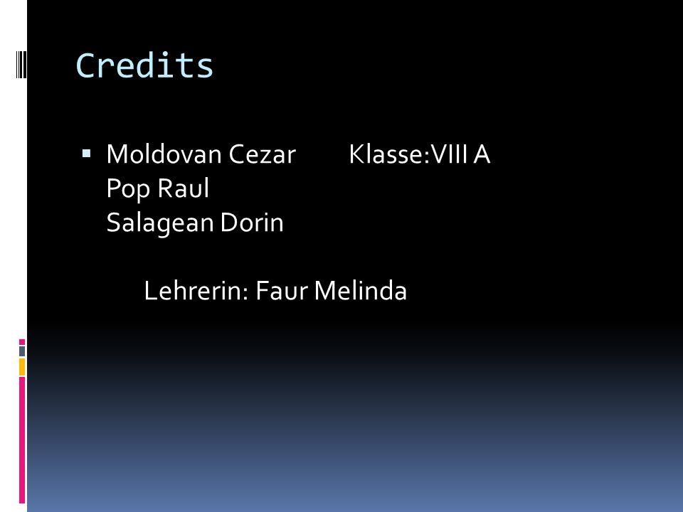 Credits Moldovan CezarKlasse:VIII A Pop Raul Salagean Dorin Lehrerin: Faur Melinda