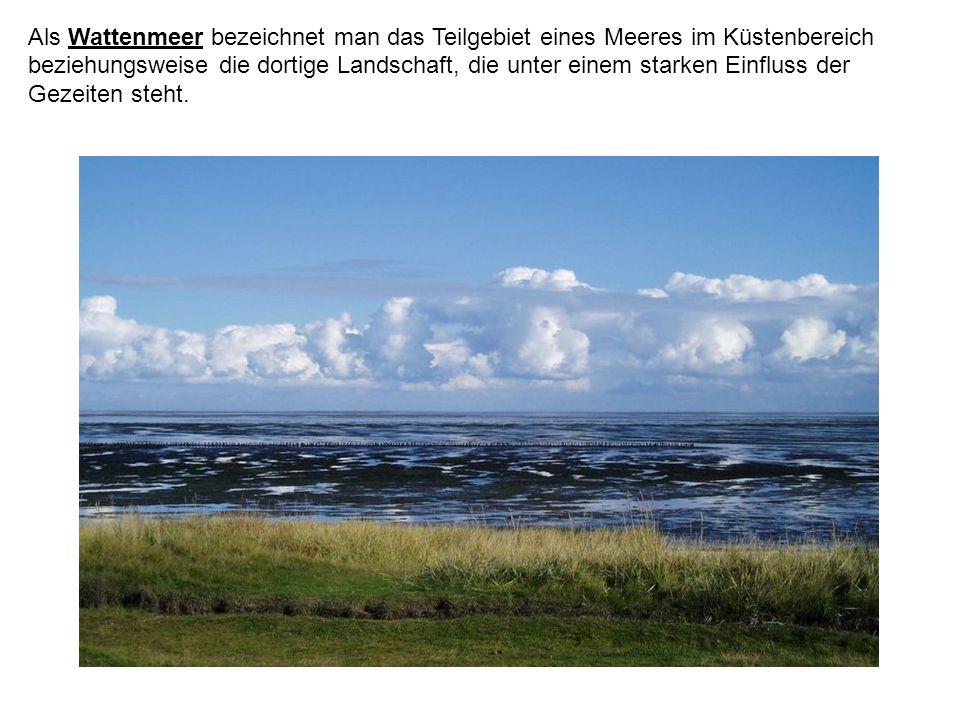 Als Wattenmeer bezeichnet man das Teilgebiet eines Meeres im Küstenbereich beziehungsweise die dortige Landschaft, die unter einem starken Einfluss de