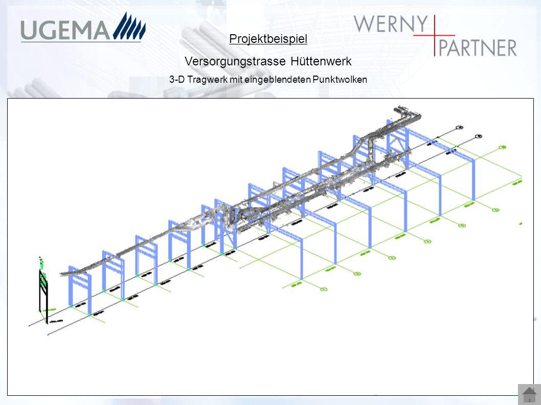 Projektbeispiel Versorgungstrasse Hüttenwerk 3-D Tragwerk mit eingeblendeten Punktwolken