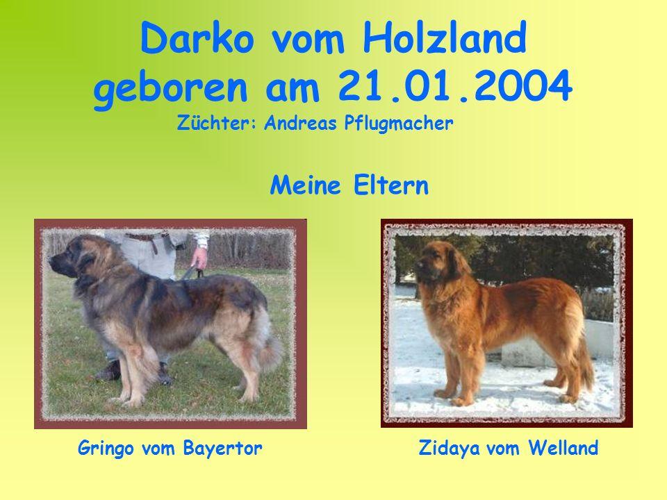 Darko vom Holzland geboren am 21.01.2004 Gringo vom BayertorZidaya vom Welland Meine Eltern Züchter: Andreas Pflugmacher