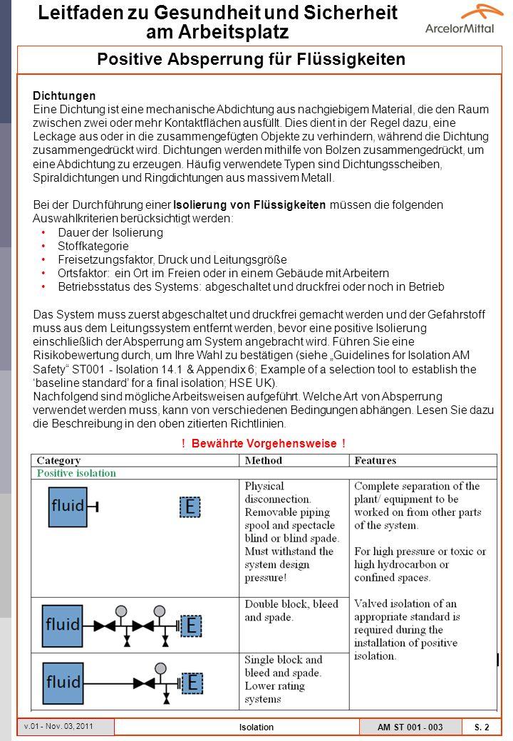 AM ST 001 - 003 S.3 Leitfaden zu Gesundheit und Sicherheit am Arbeitsplatz v.01 - Nov.