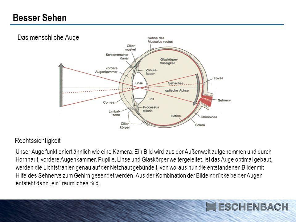prismatic bino comfort Verstärkte Additionen wie Lesebrille zu benutzen binokulares Sehen hohe Additionen entspanntes Sehen durch prismatische Unterstützung System Individual Vergrößerung/Arbeitsabstand 4 Dpt 25,0 cm 6 Dpt 16,5 cm 8 Dpt 12,5 cm 10 Dpt 10,0 cm