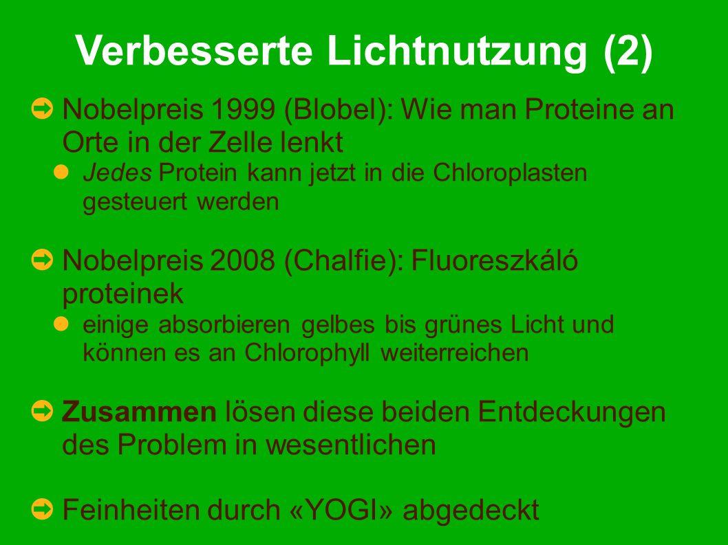 Verbesserte Lichtnutzung (2) Nobelpreis 1999 (Blobel): Wie man Proteine an Orte in der Zelle lenkt Jedes Protein kann jetzt in die Chloroplasten gesteuert werden Nobelpreis 2008 (Chalfie): Fluoreszkáló proteinek einige absorbieren gelbes bis grünes Licht und können es an Chlorophyll weiterreichen Zusammen lösen diese beiden Entdeckungen des Problem in wesentlichen Feinheiten durch «YOGI» abgedeckt