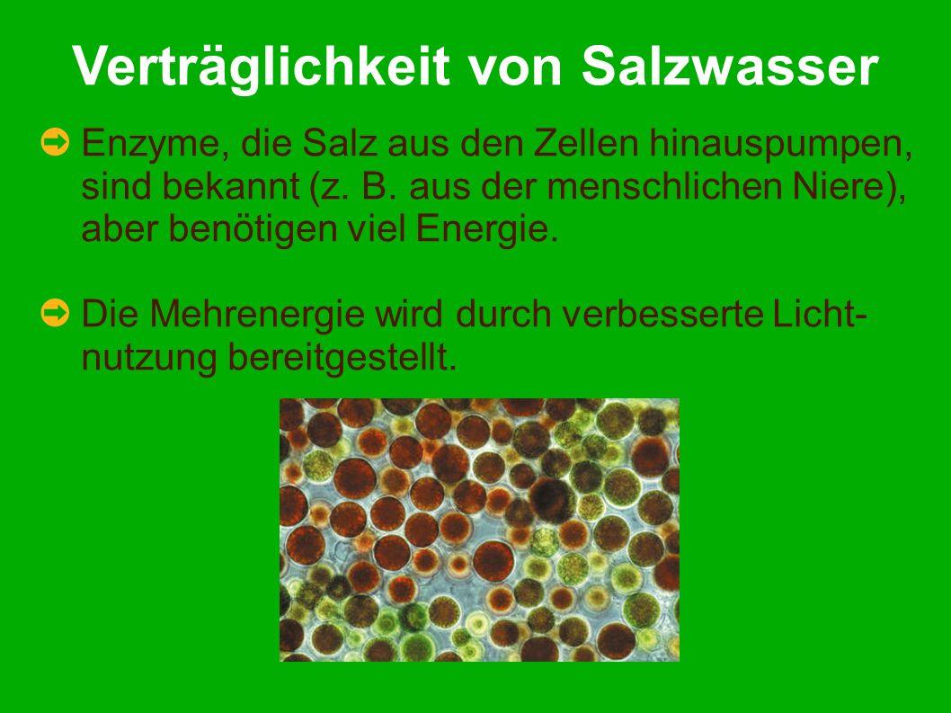 Verträglichkeit von Salzwasser Enzyme, die Salz aus den Zellen hinauspumpen, sind bekannt (z.