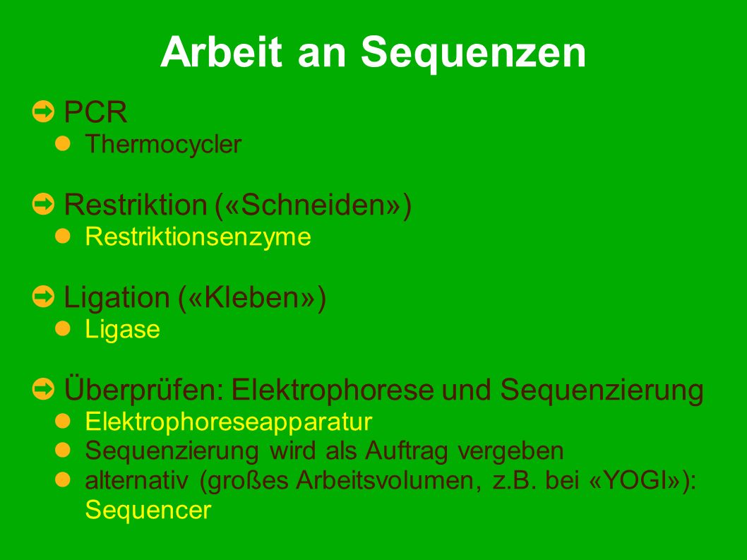 Arbeit an Sequenzen PCR Thermocycler Restriktion («Schneiden») Restriktionsenzyme Ligation («Kleben») Ligase Überprüfen: Elektrophorese und Sequenzierung Elektrophoreseapparatur Sequenzierung wird als Auftrag vergeben alternativ (großes Arbeitsvolumen, z.B.