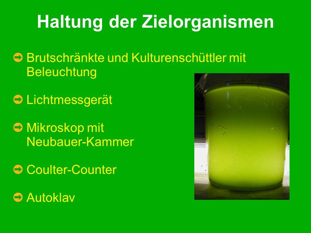 Haltung der Zielorganismen Brutschränkte und Kulturenschüttler mit Beleuchtung Lichtmessgerät Mikroskop mit Neubauer-Kammer Coulter-Counter Autoklav