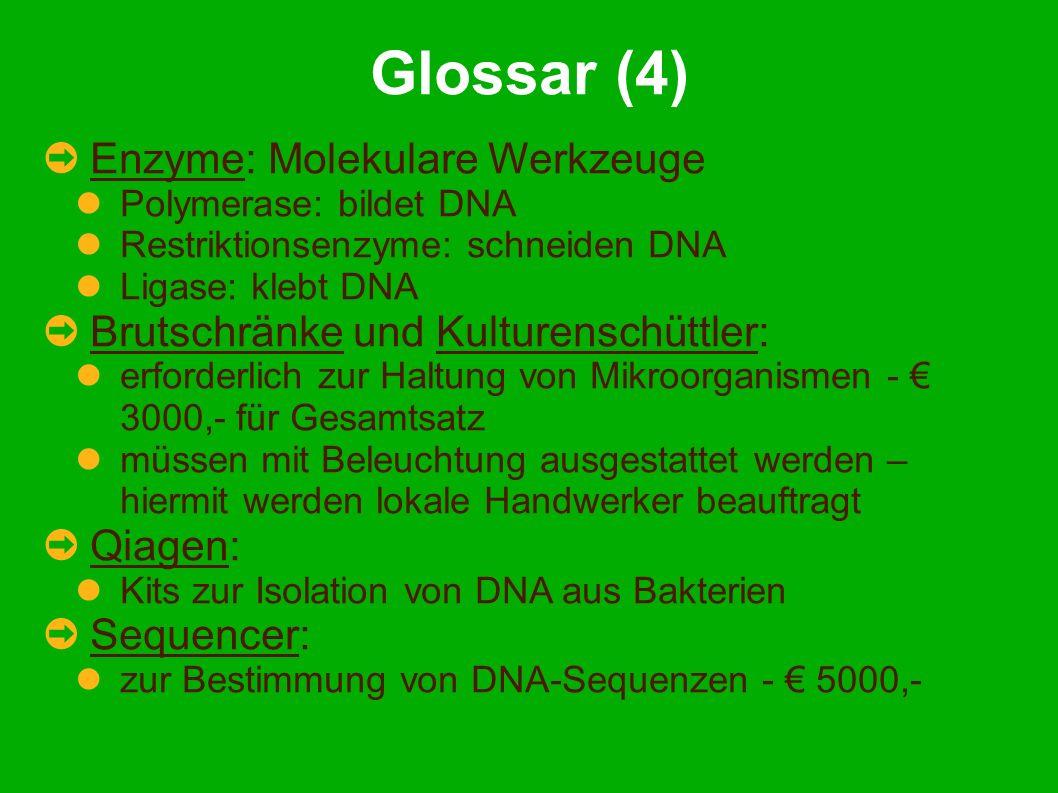 Glossar (4) Enzyme: Molekulare Werkzeuge Polymerase: bildet DNA Restriktionsenzyme: schneiden DNA Ligase: klebt DNA Brutschränke und Kulturenschüttler: erforderlich zur Haltung von Mikroorganismen - 3000,- für Gesamtsatz müssen mit Beleuchtung ausgestattet werden – hiermit werden lokale Handwerker beauftragt Qiagen: Kits zur Isolation von DNA aus Bakterien Sequencer: zur Bestimmung von DNA-Sequenzen - 5000,-