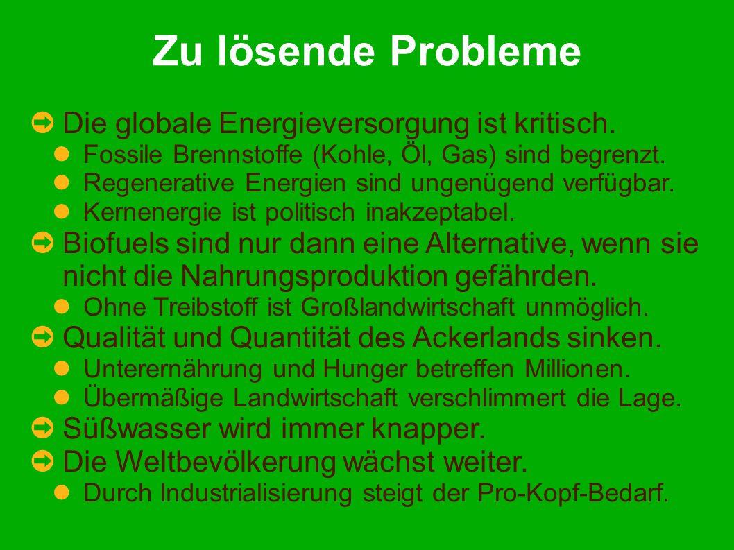 Zu lösende Probleme Die globale Energieversorgung ist kritisch.