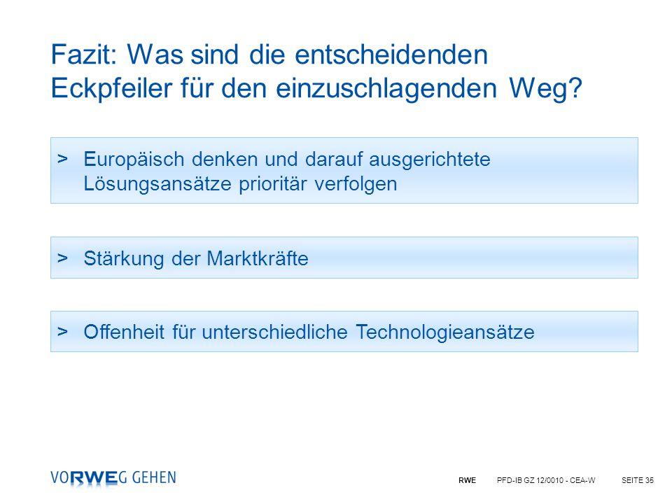 RWE PFD-IB GZ 12/0010 - CEA-WSEITE 35 Fazit: Was sind die entscheidenden Eckpfeiler für den einzuschlagenden Weg? >Europäisch denken und darauf ausger