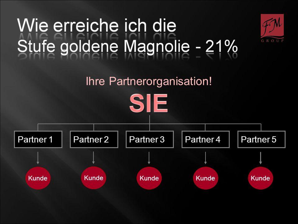 Kunde Partner 1Partner 2Partner 3Partner 4Partner 5 Ihre Partnerorganisation! Kunde