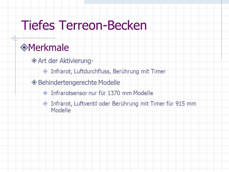 Tiefes Terreon-Becken Merkmale Art der Aktivierung- Infrarot, Luftdurchfluss, Berührung mit Timer Behindertengerechte Modelle Infrarotsensor nur für 1