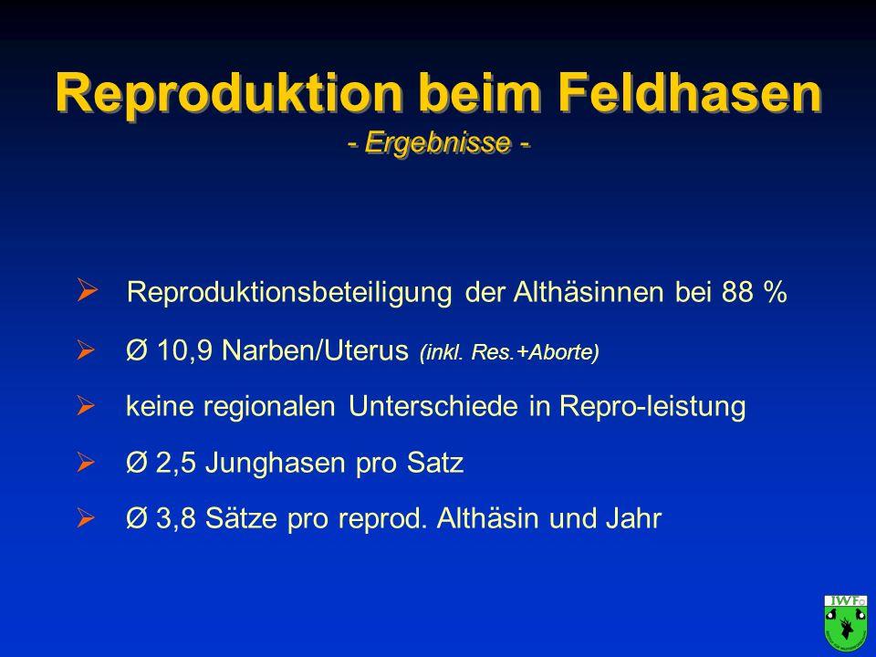 Reproduktion beim Feldhasen - Ergebnisse - Reproduktionsbeteiligung der Althäsinnen bei 88 % Ø 10,9 Narben/Uterus (inkl. Res.+Aborte) keine regionalen