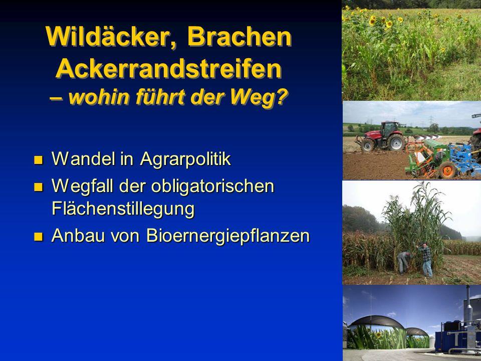 Wildäcker, Brachen Ackerrandstreifen – wohin führt der Weg? n Wandel in Agrarpolitik n Wegfall der obligatorischen Flächenstillegung n Anbau von Bioer