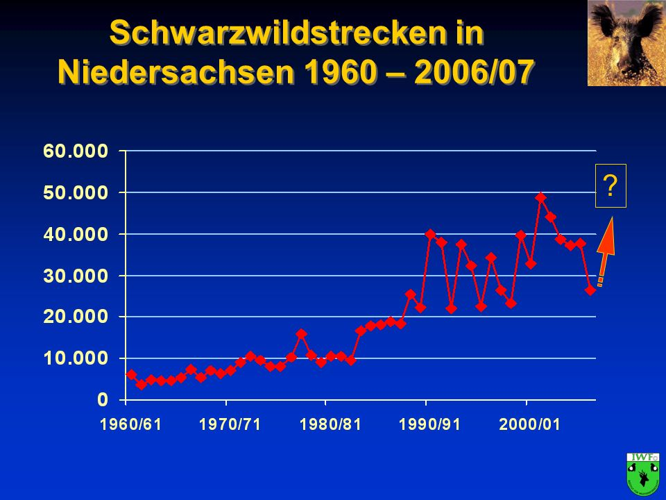 Schwarzwildstrecken in Niedersachsen 1960 – 2006/07 ?