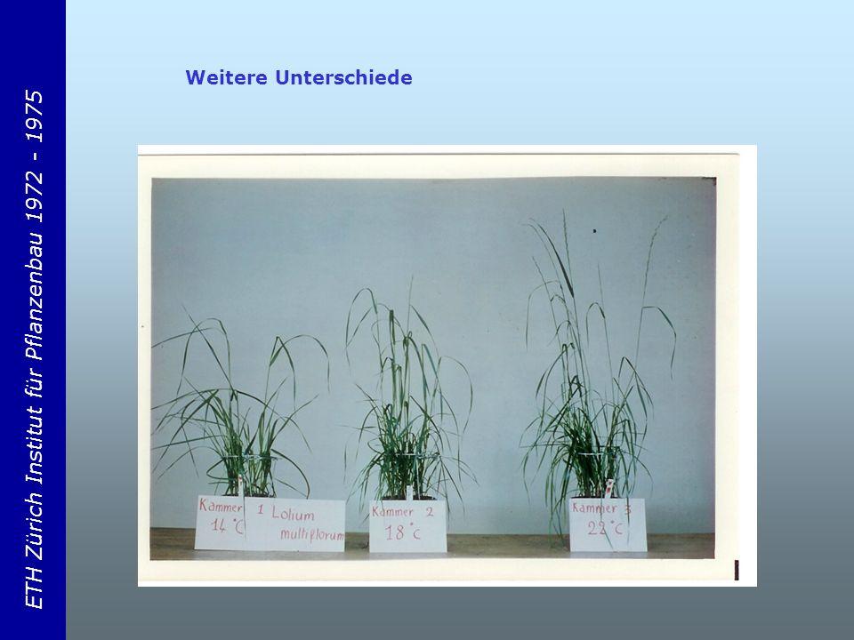 ETH Zürich Institut für Pflanzenbau 1972 - 1975 Weitere Unterschiede