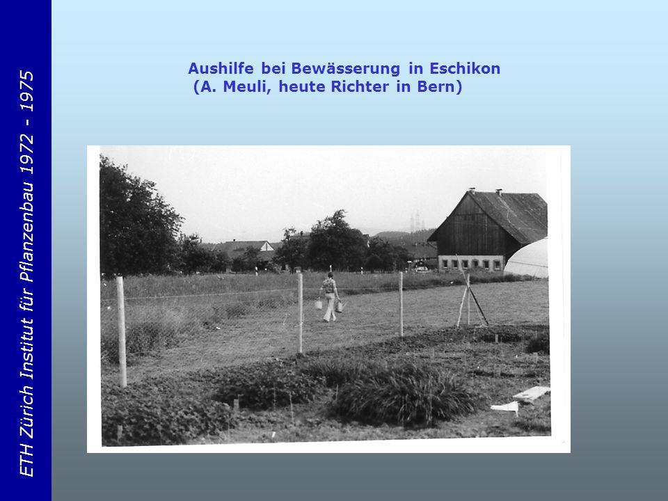ETH Zürich Institut für Pflanzenbau 1972 - 1975 Aushilfe bei Bewässerung in Eschikon (A.