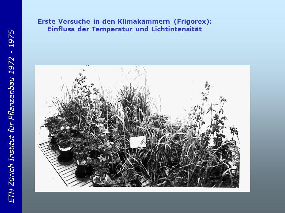 ETH Zürich Institut für Pflanzenbau 1972 - 1975 Erste Versuche in den Klimakammern (Frigorex): Einfluss der Temperatur und Lichtintensität