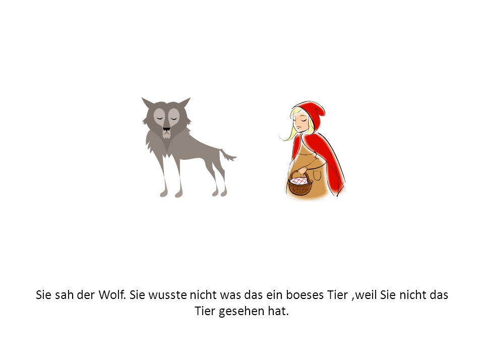 Sie sah der Wolf. Sie wusste nicht was das ein boeses Tier,weil Sie nicht das Tier gesehen hat.