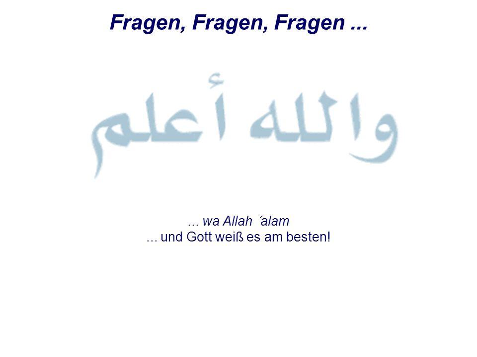 Fragen, Fragen, Fragen...... wa Allah ´alam... und Gott weiß es am besten!