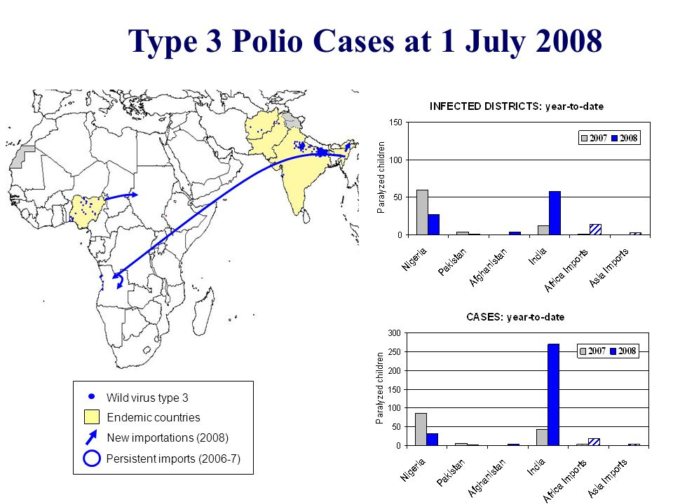 Type 3 Polio Cases at 1 July 2008 Endemic countries Wild virus type 3 New importations (2008) Persistent imports (2006-7)