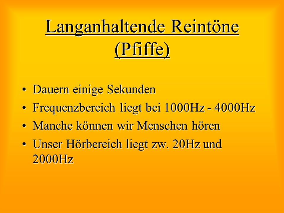 Langanhaltende Reintöne (Pfiffe) Dauern einige SekundenDauern einige Sekunden Frequenzbereich liegt bei 1000Hz - 4000HzFrequenzbereich liegt bei 1000H