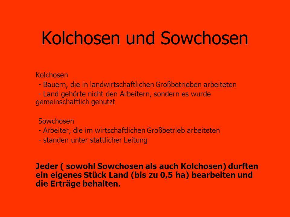 Kolchosen und Sowchosen Kolchosen - Bauern, die in landwirtschaftlichen Großbetrieben arbeiteten - Land gehörte nicht den Arbeitern, sondern es wurde