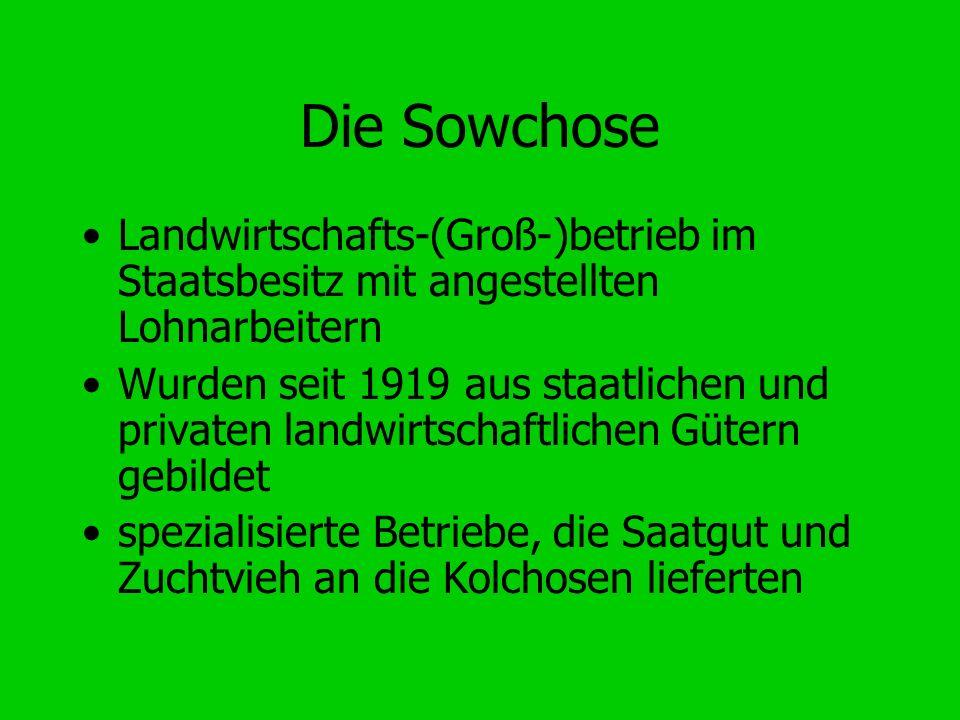 Die Sowchose Landwirtschafts-(Groß-)betrieb im Staatsbesitz mit angestellten Lohnarbeitern Wurden seit 1919 aus staatlichen und privaten landwirtschaf
