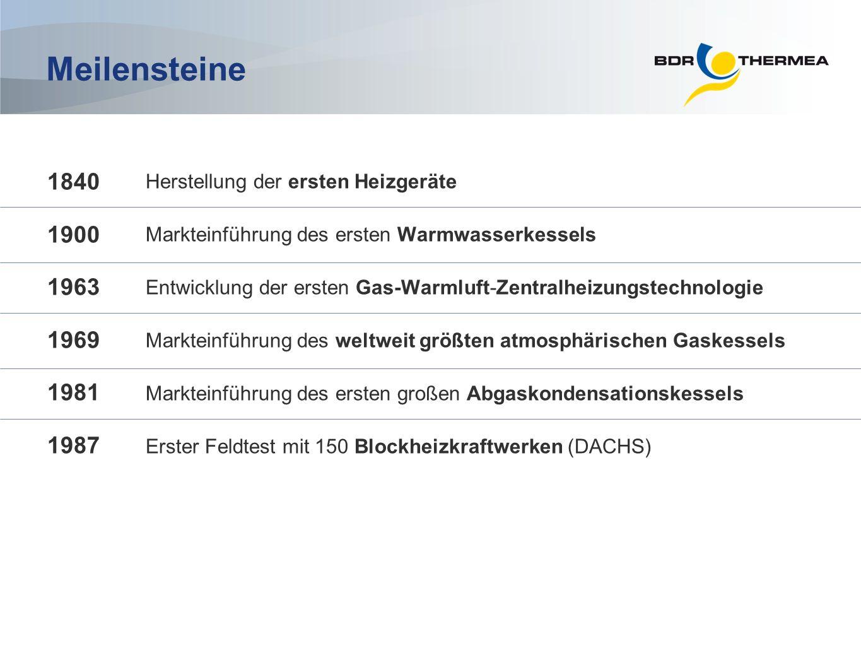 Umsatz pro Produktsegment (2010) Erneuerbare Energien Warmwasser bereiter Service & Ersatzteile Verwandte Produkte: Brenner, Kühler usw.