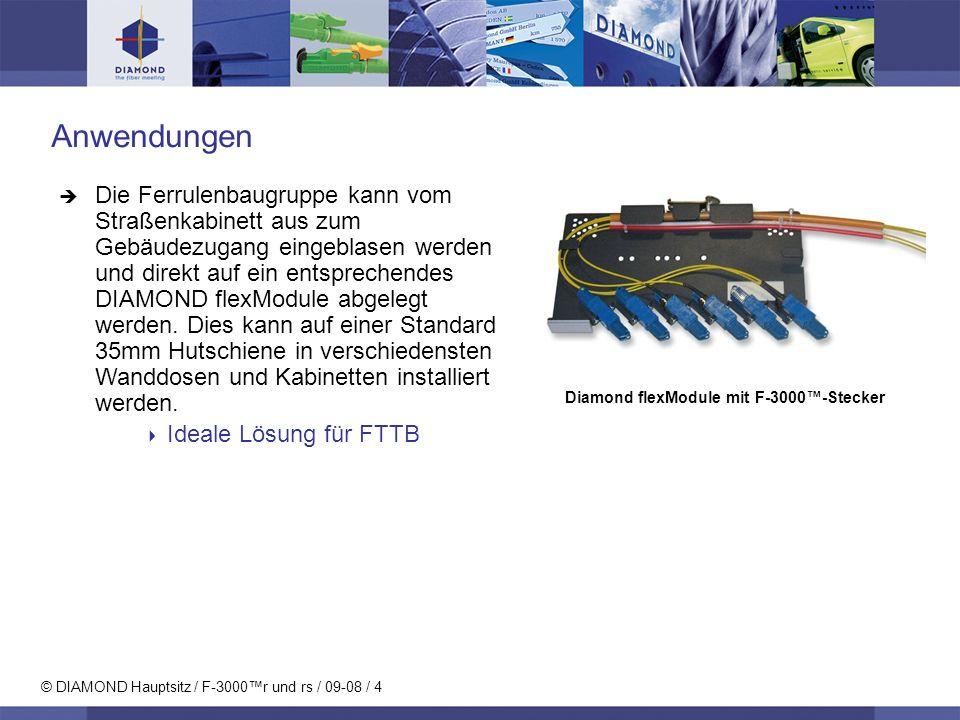 © DIAMOND Hauptsitz / F-3000r und rs / 09-08 / 5 Diamond patentierte Aktive Kernzentrierung Hervorragende optische Eigenschaften dank: Computerunterstütze Kernzentrierung Extrem verringerte Kernexzentrizität (< 0.2 µm) Hochpräzise Schielwinkel- messung