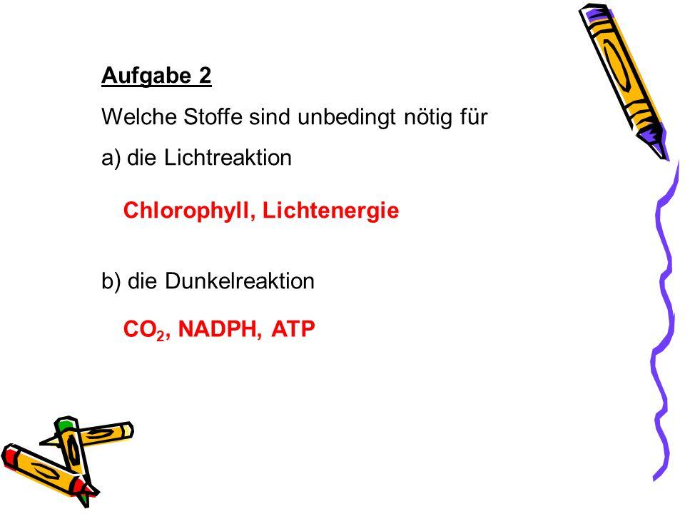 Aufgabe 2 Welche Stoffe sind unbedingt nötig für a)die Lichtreaktion b) die Dunkelreaktion Chlorophyll, Lichtenergie CO 2, NADPH, ATP