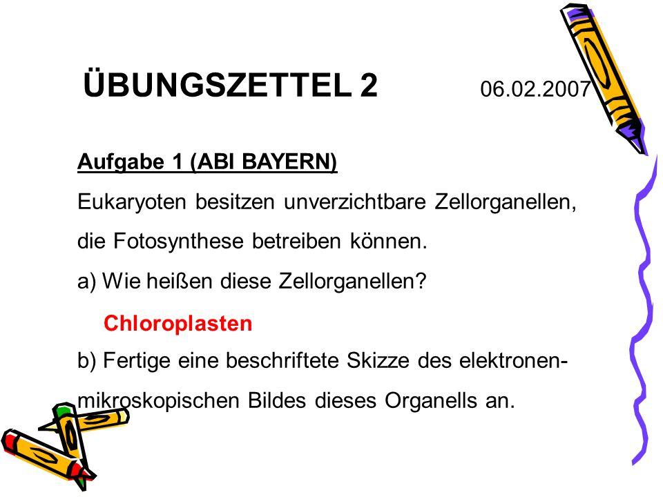ÜBUNGSZETTEL 2 06.02.2007 Aufgabe 1 (ABI BAYERN) Eukaryoten besitzen unverzichtbare Zellorganellen, die Fotosynthese betreiben können. a)Wie heißen di